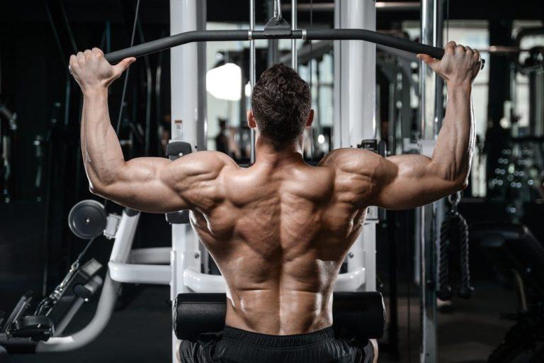 проработка спины и бицепсов