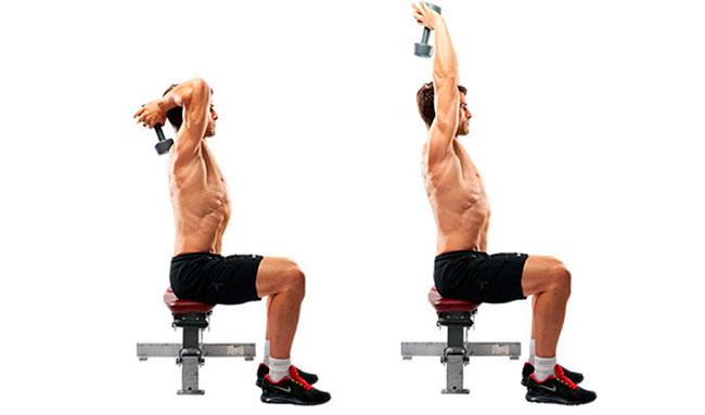 Разгибание рук с гантелей из-за головы – это изолированное упражнение для развития трехглавой мышцы плеча(трицепса). Оно было очень популярно среди бодибилдеров золотой эры. Сейчас конечно можно реже увидеть людей, которые его используют. Отдавая предпочтение ЖИМУ ШТАНГИ УЗКИМ ХВАТОМ или ОБРАТНЫМ ОТЖИМАНИЯ. Да, это отличные базовые упражнение, с помощью которых можно сделать бицепс более массивным. Но для того, чтобы придать ему форму, нужно использовать изолированные движения в своих тренировках. И разгибание из-за головы, отлично подойдет для этой роли. Данная статья поможет разобраться во всех тонкостях этого упражнения.