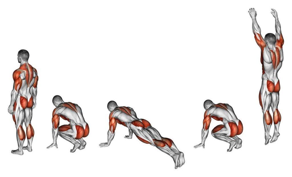 Берпи мышцы