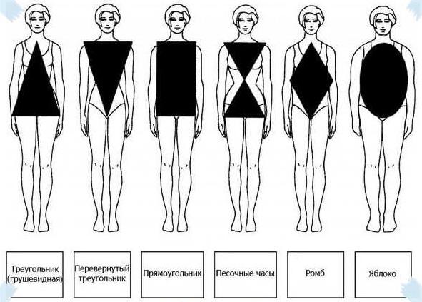Типология телосложения у женщин